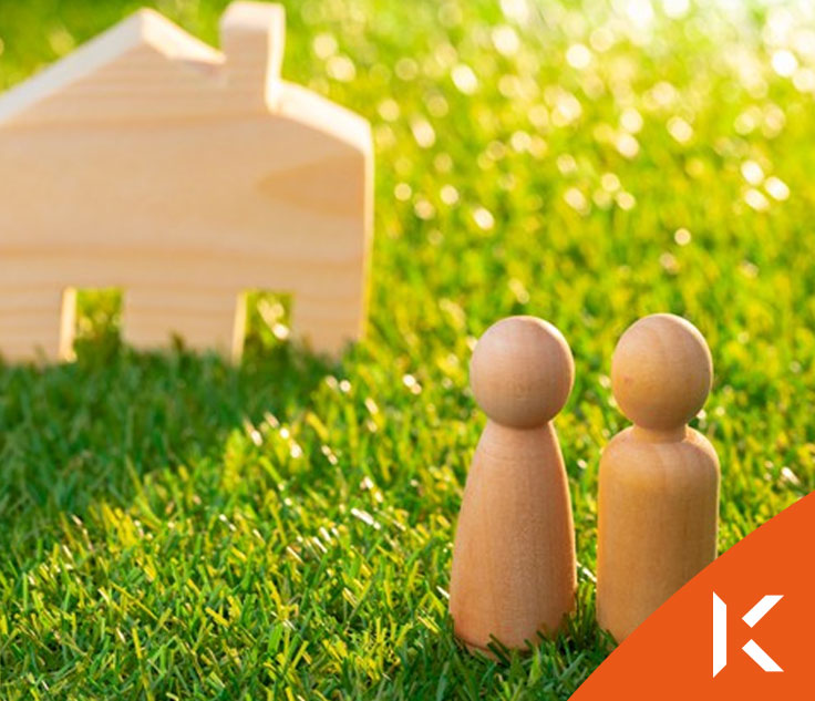 What are Housing Grants?